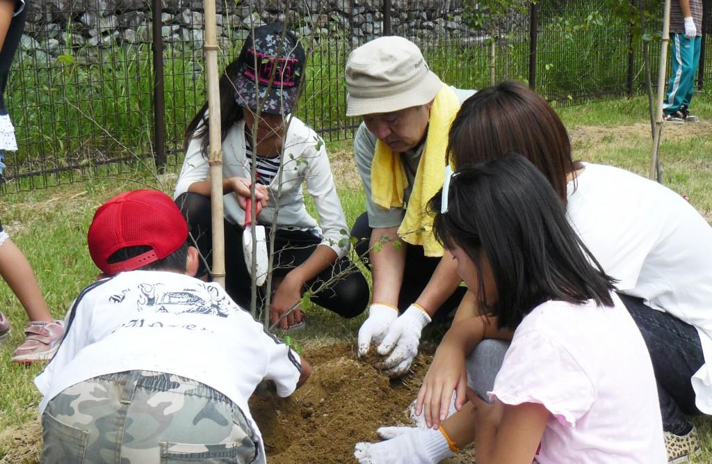 エノキ苗木植樹