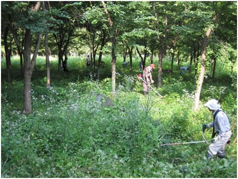 「共生の森2000」を育てる会 第1回管理作業